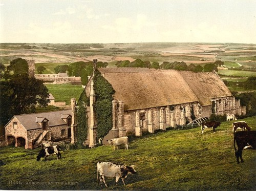 [The Abbey, Abbotsbury, England]