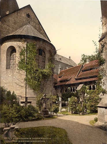 [Cathedral, churchyard and 1,000 year old rose tree, Hildesheim, Hanover, Germany]